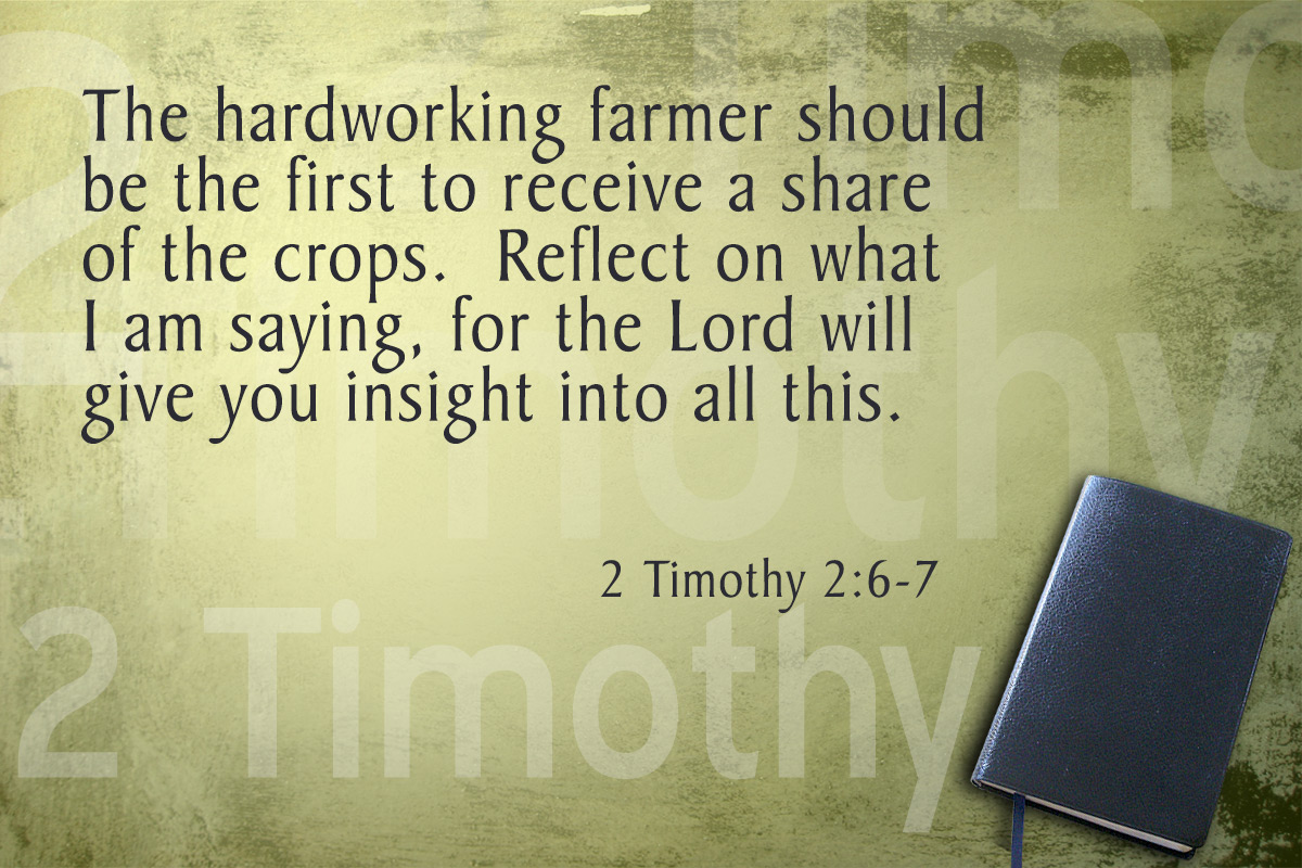 A summary of each chapter in pauls letters to timothy in the bible