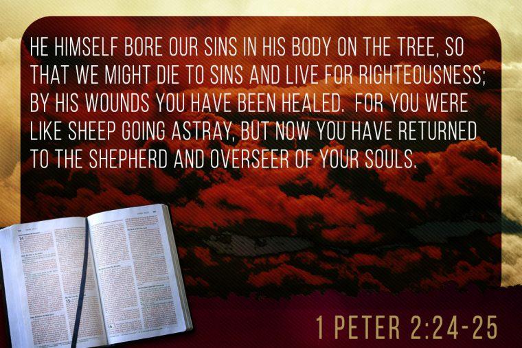 1 Peter 2:24-25