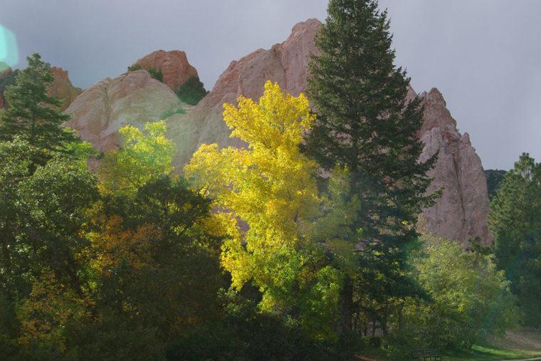 Aspens In Full Color - Glen Eyrie