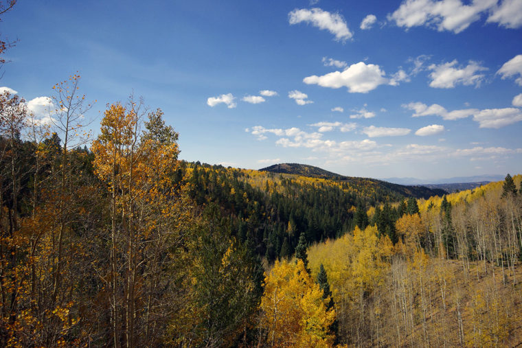 Aspens On The Mountains - Cripple Creek, Colorado